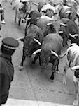 Running of the Bulls, Pamplona, Spain Stock Photo - Premium Royalty-Free, Artist: Mike Randolph, Code: 621-01004653