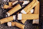 Cigarette Butts Stock Photo - Premium Royalty-Freenull, Code: 621-01005789