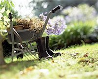 Gardening Supplies in the Backyard Stock Photo - Premium Royalty-Freenull, Code: 621-01006553