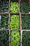 Peppers Stock Photo - Premium Rights-Managed, Artist: Pierre Arsenault, Code: 700-01037297