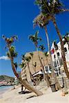 Side view of a beach having palm trees, St. Maarten, Caribbean