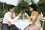 Couple Making a Toast    Stock Photo - Premium Rights-Managed, Artist: Masterfile, Code: 700-01073595