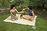 Couple Having a Picnic    Stock Photo - Premium Rights-Managed, Artist: Masterfile, Code: 700-01073621