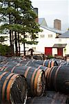 Ben Nevis Distillery, Scotland    Stock Photo - Premium Rights-Managed, Artist: Kevin Arnold, Code: 700-01111805