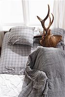 Deer Head in Bed    Stock Photo - Premium Royalty-Freenull, Code: 600-01124358