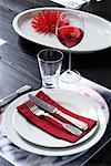 Place Setting    Stock Photo - Premium Rights-Managed, Artist: Ruprecht Stempell, Code: 700-01163810