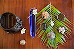 Still Life of Coconut Body Scrub Ingredients    Stock Photo - Premium Rights-Managed, Artist: R. Ian Lloyd, Code: 700-01164921