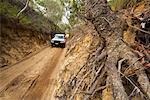 Middle Road, Moreton Island, Queensland, Australia