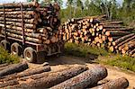 Logging Truck    Stock Photo - Premium Rights-Managed, Artist: Sherman Hines, Code: 700-01172589