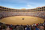 Plaza de Toros de Las Ventas, Madrid, Spain    Stock Photo - Premium Rights-Managed, Artist: Graham French, Code: 700-01183195