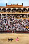 Bullfight, Plaza de Toros de Las Ventas, Madrid, Spain    Stock Photo - Premium Rights-Managed, Artist: Graham French, Code: 700-01183201