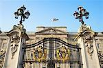 Gate, Buckingham Palace, London, England    Stock Photo - Premium Rights-Managed, Artist: Graham French, Code: 700-01183543
