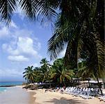 Beach, Guadeloupe, Caribbean