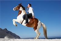 Horse Rearing with Businessman on Its Back    Stock Photo - Premium Rights-Managednull, Code: 700-01185195