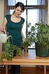 Woman Watering Plants    Stock Photo - Premium Rights-Managed, Artist: Sarah Murray, Code: 700-01194765