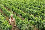 Man Standing in Vineyard    Stock Photo - Premium Rights-Managed, Artist: Masterfile, Code: 700-01195399