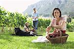 Family Collecting Grapes in Vineyard    Stock Photo - Premium Rights-Managed, Artist: Masterfile, Code: 700-01195413