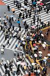 Aerial View of Shibuya Crossing, Tokyo, Japan    Stock Photo - Premium Rights-Managed, Artist: Jeremy Woodhouse, Code: 700-01195788