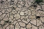 Dried and cracked mud Stock Photo - Premium Royalty-Free, Artist: foto4u                        , Code: 614-01219280