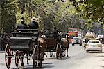 Horse-Drawn Carriages in Street, Malaga, Spain    Stock Photo - Premium Rights-Managed, Artist: Mike Randolph, Code: 700-01224290