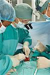Doctors Performing Surgery    Stock Photo - Premium Rights-Managed, Artist: Masterfile, Code: 700-01234851