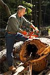 Man Cutting Wood With Chainsaw    Stock Photo - Premium Rights-Managed, Artist: Peter Barrett, Code: 700-01236657
