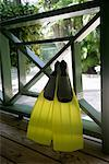 Flippers on Porch    Stock Photo - Premium Rights-Managed, Artist: Steve McDonough, Code: 700-01249087