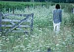 Man walking in field, passing wooden gate, rear view