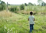 Boy walking through field, rear view