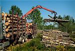 Claw Loading Lumber onto Truck    Stock Photo - Premium Rights-Managed, Artist: Sherman Hines, Code: 700-01295616