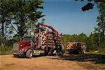 Loaded Logging Truck Driving Away    Stock Photo - Premium Rights-Managed, Artist: Sherman Hines, Code: 700-01295619