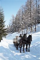 Sleigh Ride    Stock Photo - Premium Rights-Managed, Artist: Masterfile, Code: 700-01296144
