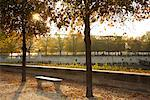 Park at Sunset, Paris, France    Stock Photo - Premium Rights-Managed, Artist: Gary Matoso, Code: 700-01344860