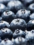 Close-up of blueberries Stock Photo - Premium Royalty-Free, Artist: Eyecandy Pro, Code: 640-01354768