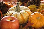 Close-up of two pumpkins and an apple Stock Photo - Premium Royalty-Free, Artist: StephanieFrey                 , Code: 640-01365301