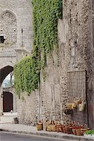 Vines on the wall of a building Stock Photo - Premium Royalty-Freenull, Code: 640-01365923