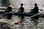 Businesspeople Rowing Stock Photo - Premium Royalty-Freenull, Code: 618-01445388