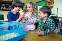 Girl and two boys playing with school hamster Stock Photo - Premium Royalty-Freenull, Code: 618-01445965