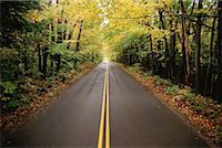 road landscape - Road in lush forest Stock Photo - Premium Royalty-Freenull, Code: 618-01448226