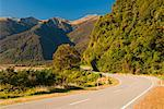 Haast Valley Road, South Island, New Zealand    Stock Photo - Premium Royalty-Free, Artist: Jochen Schlenker, Code: 600-01458385