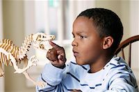 pre-teen boy models - Boy with Model Dinosaur    Stock Photo - Premium Rights-Managednull, Code: 700-01519696