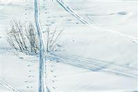 Tracks in snow Stock Photo - Premium Royalty-Freenull, Code: 633-01572984
