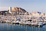 Yachts, Costa Blanca, Spain    Stock Photo - Premium Rights-Managed, Artist: Jeremy Woodhouse, Code: 700-01587195
