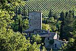 Stone Farmhouse, Chianti Region, Tuscany, Italy    Stock Photo - Premium Rights-Managed, Artist: Jeremy Woodhouse, Code: 700-01593950