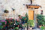 Potted Plants Outside Building, Chianti Region, Tuscany, Italy    Stock Photo - Premium Rights-Managed, Artist: Jeremy Woodhouse, Code: 700-01593952