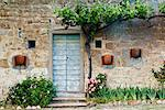 Flowerbed and Vine outside Building, Chianti Region, Tuscany, Italy    Stock Photo - Premium Rights-Managed, Artist: Jeremy Woodhouse, Code: 700-01593955