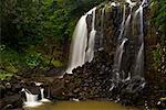Mungalli Falls, Atherton Tablelands, Queensland, Australia