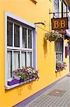 Bed and Breakfast, Kinsale, Ireland    Stock Photo - Premium Rights-Managed, Artist: Siephoto, Code: 700-01607066