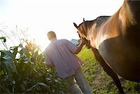 Farmer Leading Horse    Stock Photo - Premium Royalty-Freenull, Code: 600-01632711
