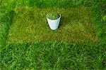 Grass Clippings    Stock Photo - Premium Rights-Managed, Artist: Chris Hendrickson, Code: 700-01633302